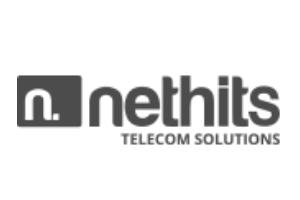 nethits-globeteltech
